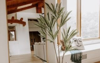 Simple Room with unique planter with tall tree plant- full length mirror